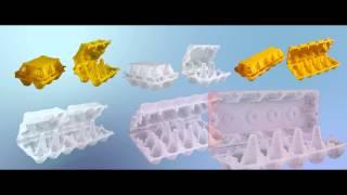 Пластиковая упаковка для яиц(ЗАО Производственная компания