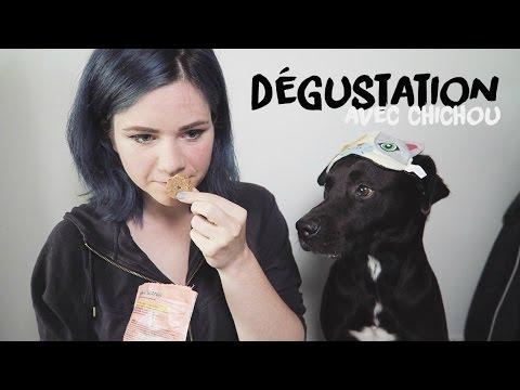 DÉGUSTATION | ... pour chiens !