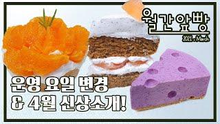 [월간앞빵] 3월소식_천혜향타르트, raw블루베리치즈케…