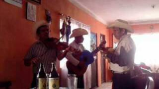 Trio Alegria Hidalguense de Tripuente Pisaflores, Hidalgo