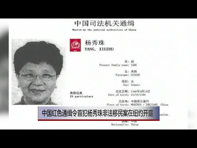 voa连线-中国红色通缉令首犯杨秀珠非法移民案在纽约开庭