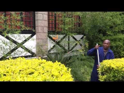 Weather 2 14 part 2 - Nairobi, Kenya