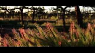 Vino farms | bamboohr