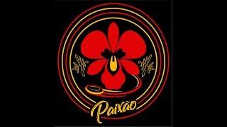 Paixão Ultimate Medellín (video clip institucional)