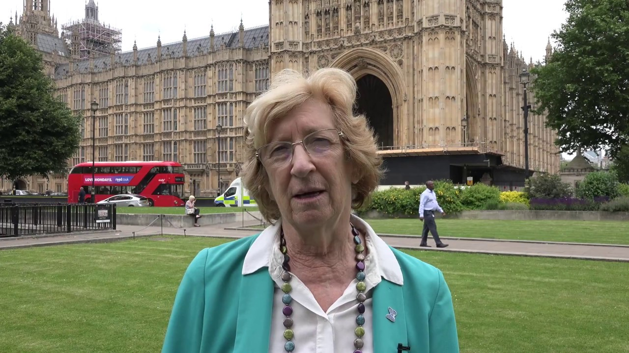 UK's Baroness Meacher supports 'Free Iran' gathering on June 30