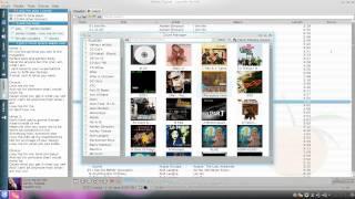 Clementine - Modern Music Player - Kubuntu 10.10