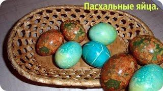Как покрасить яйца на Пасху. Пасхальные яйца.