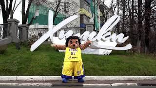 Флешмоб «обними меня, если любишь баскетбол» - Ежик