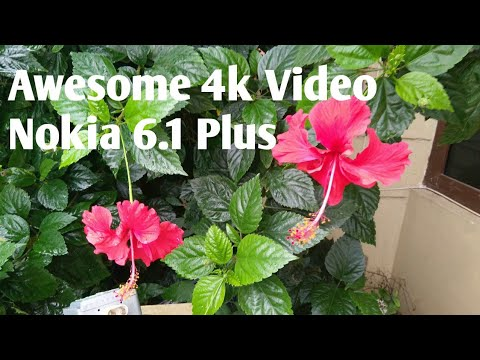 Nokia 6.1 Plus 4K Video Recording Sample. Raw Video No Editing