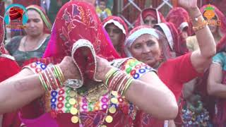 Rajasthani Song Rajasthani Marriage dance Indian Wedding Dance videos