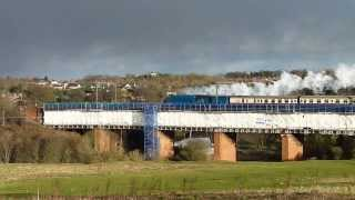 Bittern - Tyne Tees Streak 5 December 2013 - crossing the Browney Viaduct