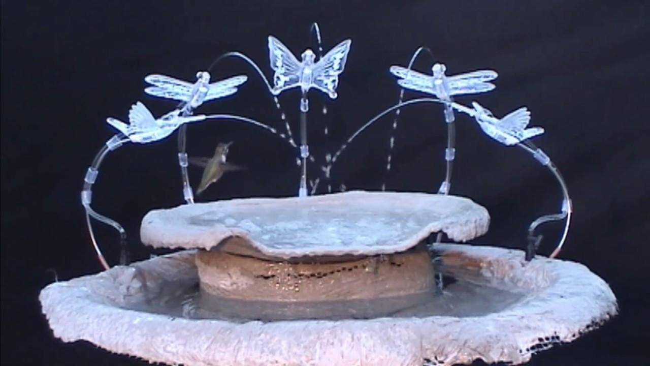 Designed For Hummingbirds Prototype Quot Hummingbird