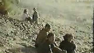 Oregon's Exploding Whale - 1970 KATU (original report) thumbnail