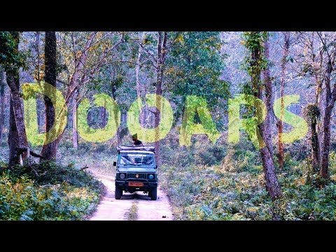 DOOARS Is Awesome| Incredible North Bengal Part 1