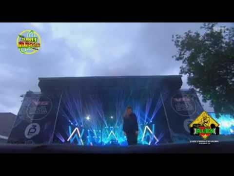Alan Walker - faded reggae clip