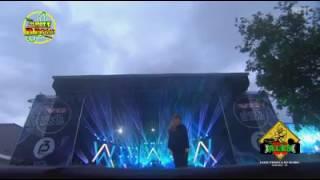 Alan Walker - faded reggae clip