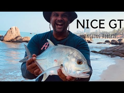 SURF FISHING ... Trevally (GT)  Right Off The Beach [ Sri Lanka Fishing ]