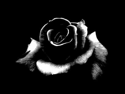 Cr7z - Schwarze Rosen