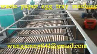 waste paper pulp molding egg tray machine-egg dishes machinery