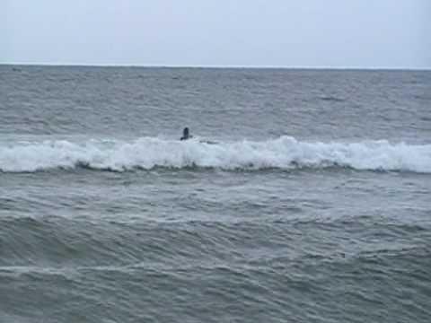 Surfing School @Onjyuku Chiba