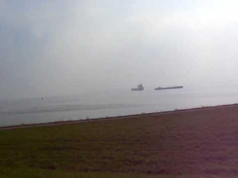 Port of Antwerp seen from Bath (Holland)