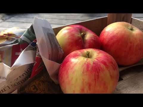 Vinterförvaring Av Äpplen - Vinterförvara Äpple så här gör du ! Hur Var Vilka äpplen Jessica Lyon