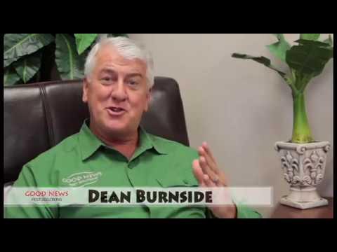 Term-Assure 365™ - World-Class Termite Protection & Pest Control Bundled Together!