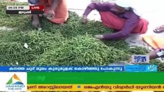Business Today Raising Concerns Over Pepper Farming In Kerala 15th March 2016 Part 1 1