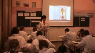 Урок биологии в 8 классе