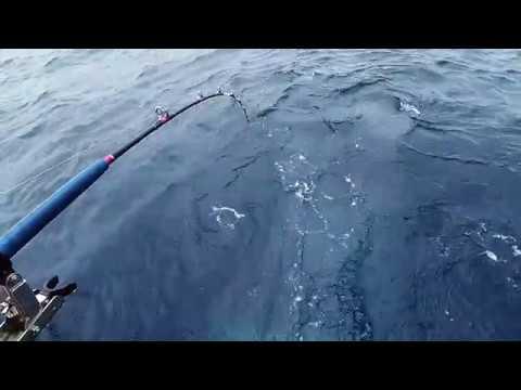 船釣深海紅皮刀及大黑草 --24 Feb 2018/東澳海安一號海釣船