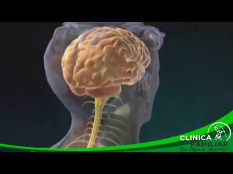 La Diabetes Mellitus y sus Complicaciones