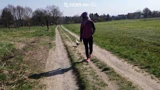 2020년 3월 28일 프랑크푸르트 애견하고 숲속 산책