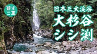 大杉谷渓谷:シシ渕 ドロー...