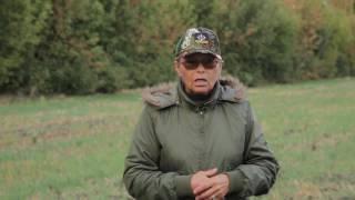 Охотничьи собаки. 28 серия. Русская пегая гончая