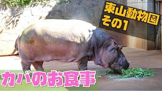 東山動植物園の詳しいレポート記事はこちら https://mirumiruland.com/?...