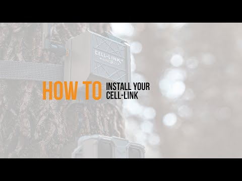 Video: CELL-LINK Installation