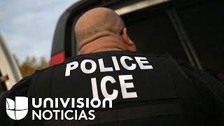 ¿Qué impactos generan en la comunidad los arrestos de Inmigración en las cortes de Nueva York?