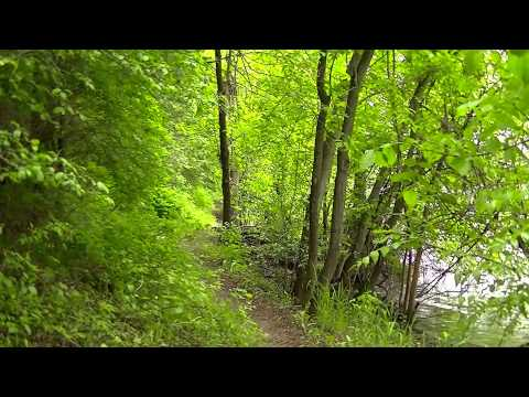 Best Trails in Minnesota ! So Peaceful -Beautiful Going Hiking Minnesota Mississippi River !