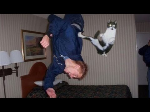 Cat Born With UNEXPLAINABLE SUPERPOWER