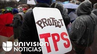 Extensión del TPS para inmigrantes de cuatro países beneficiará aproximadamente 250,000 personas