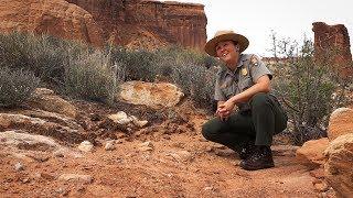 Secrets of the Moab Desert ~ 4K