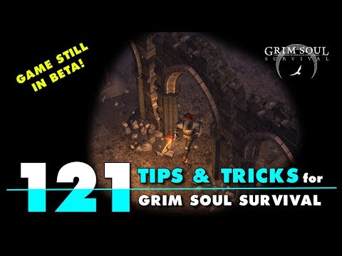 121 Tips and Tricks for Grim Soul Dark Fantasy Survival. LDOE Type Game