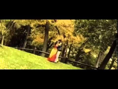 Telugu Inti Peratilona Full Video Song || Paradesi [1998]