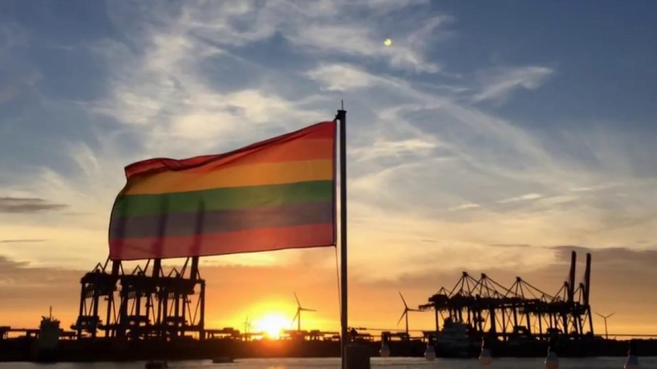 Langwimpel Fahne Flagge Hamburg Hafen verschiedene Größe