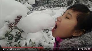 Tuyết rơi trắng xóa lần đầu ăn thử tuyết