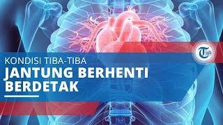 Penyakit Jantung Koroner, Penyakit Mematikan di Dunia,Terjadi ketika Pembuluh Darah Tersumbat.