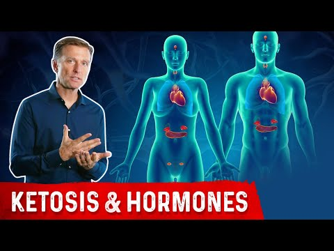 How Ketones Affect Hormones and the Endocrine System