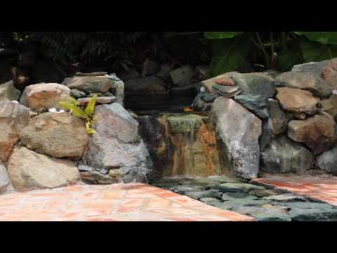 Hakuna Matata | St. John, Virign Islands