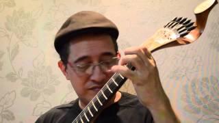 DONNA LEE Jazz na Guitarra Portuguesa