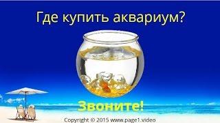 Купить Аквариум(Купить Аквариум - Где купить аквариум в России? Если вы ищете, где купить аквариум, обратитесь за помощью..., 2015-06-30T09:51:09.000Z)
